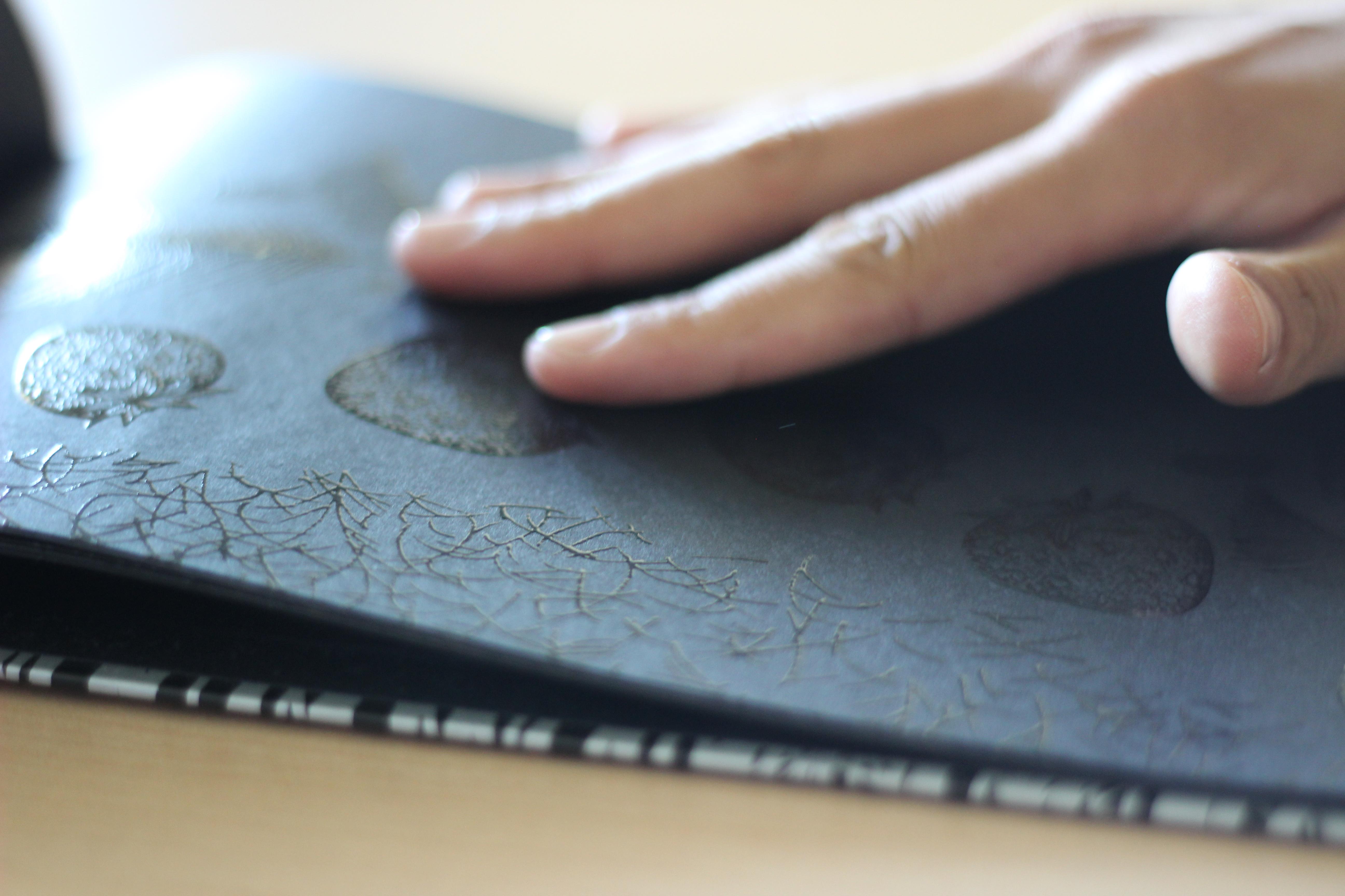 El Libro Negro de los colores di M. Cottin e R. Farìa
